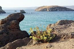 Reisen rund ums Mittelmeer