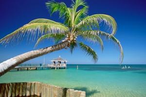 Reisen in die Karibik