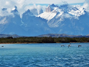 Australis-Kreuzfahrten in Südamerika