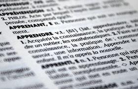 Wörterbuch im Ausland