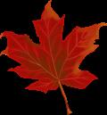 Reiseziel Kanada - Natur erleben in Nordamerika